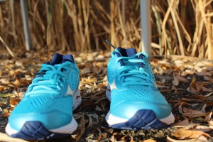Test Mizuno Wave Rider 22
